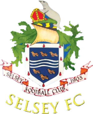 Selsey F.C. - Image: Selsey F.C. logo