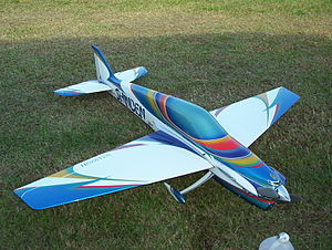 Radio-controlled aircraft - Shinden by Bryan Hebert