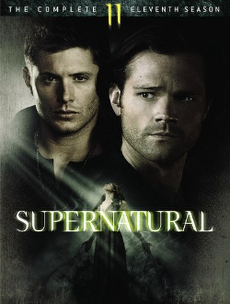 Supernatural (season 11) - DVD cover art