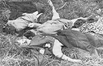 Rhodesian Bush War - White civilians; a woman and two young children killed at Elim Mission in eastern Rhodesia by ZANLA guerrillas in 1978.