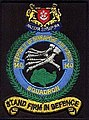 140Sqn shoulder patch.jpg
