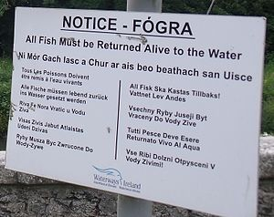 Catch and release - Multilingual catch and release sign in Ireland.