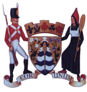 Grand Falls, New Brunswick - Image: Grand falls coat of arms
