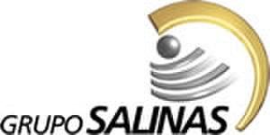 Grupo Salinas - Grupo Salinas logo
