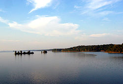 Kentucky Lake (Land Between the Lakes National Recreation Area).jpg