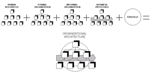 Simplified scheme of an organization