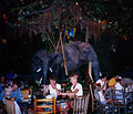 Rainforest cafe 1998.jpg