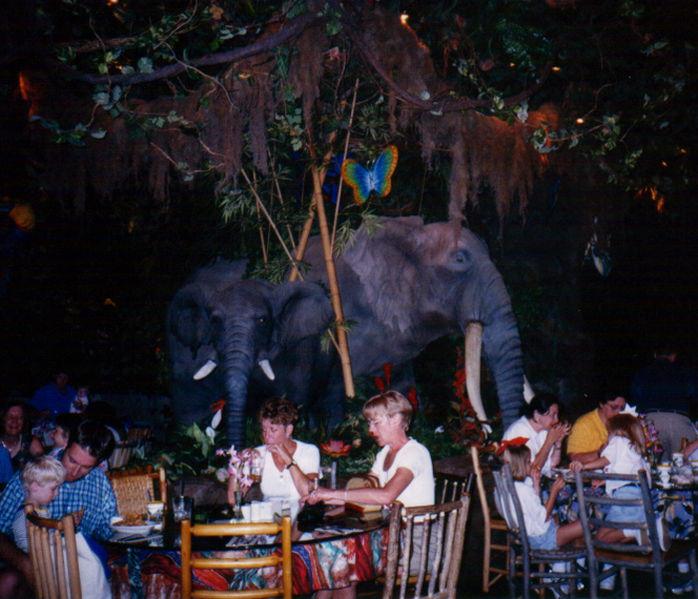 Rainforest Cafe Disney Springs Designers