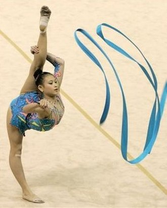 Gymnastics at the 2005 Southeast Asian Games - Image: Sea games gym 3