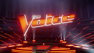 <i>The Voice</i> (American TV series) American talent competition series