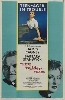 These Wilder Years FilmPoster.jpeg
