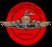 Fleet Marine Force Reconnaissance seal