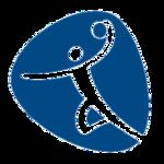 Handball, Rio 2016.png