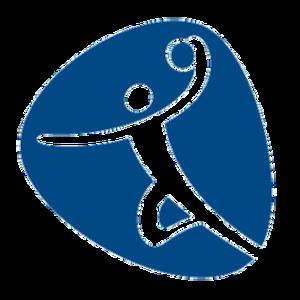 Handball at the 2016 Summer Olympics - Image: Handball, Rio 2016