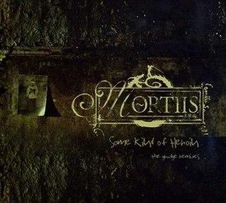 <i>Some Kind of Heroin</i> 2007 remix album by Mortiis