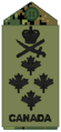 Navy olive Adm.png