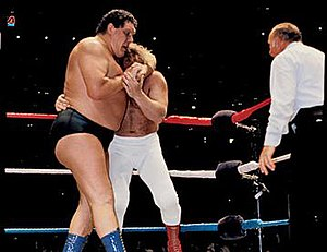 WrestleMania I - André the Giant vs. Big John Studd