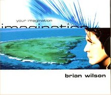 Brian Wilson - Your Imagination.jpg