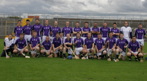 Fingal hurling team - The Fingal hurling team which played in the 2008 Nicky Rackard Cup semi-final.