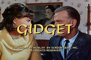 <i>Gidget</i> (TV series)