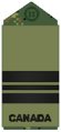 Navy olive LCdr.png