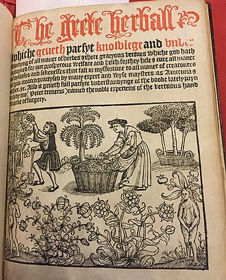 Grete Herball - Title page with frontispiece of garden scene, from 1526 edition printed by Peter Treveris