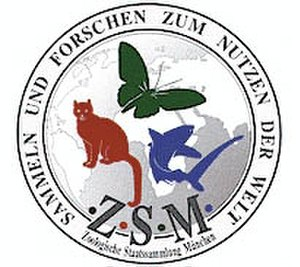 Bavarian State Collection of Zoology - Image: Zoologische Staatssammlung München
