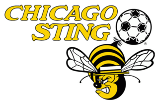 Chicago Sting Former American professional soccer team based in Chicago