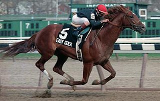 Easy Goer American Thoroughbred racehorse