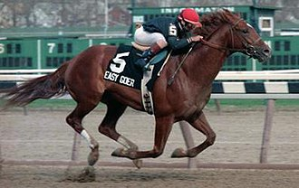 Easy Goer - Easy Goer winning the 1989 Gotham Stakes.