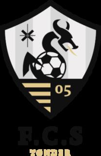 FC Sydvest 05 Danish football club