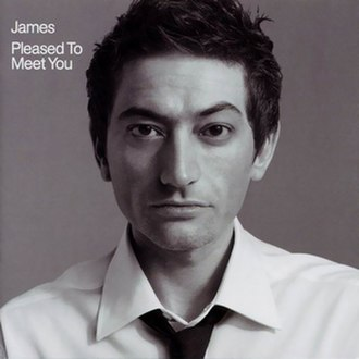 Pleased to Meet You (James album) - Image: James Pleased To Meet You