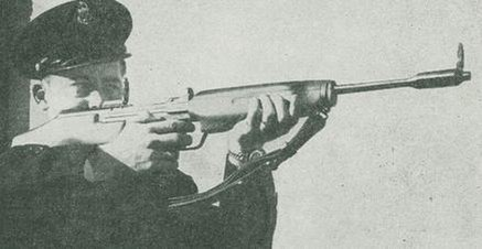 Sieg automatic rifle - The complete information and online sale with