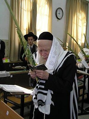 Aryeh Finkel - Rabbi Aryeh Finkel holding the Four Species at the Mir Yeshiva in Jerusalem