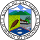 Official seal of San Fabian