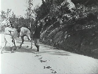 <i>Thunderbolt</i> (1910 film) 1910 film