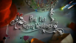 Big Fat Gypsy Weddings.png