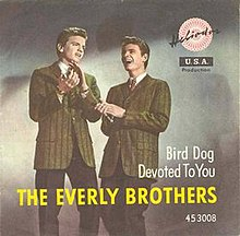Bird Dog single cover.jpg