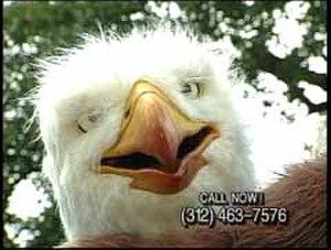 "Eagle Insurance - Screenshot from original 1993 ""Eagle Man"" commercial."