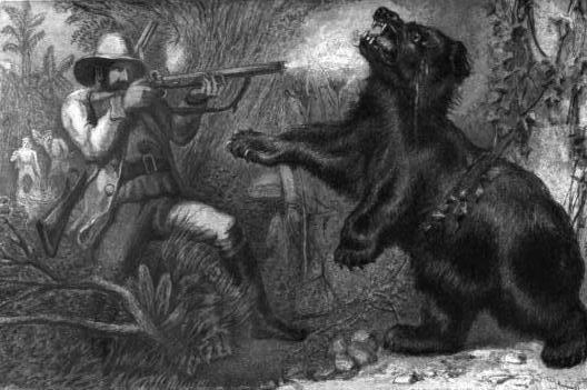 Indianbearhunt