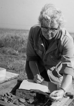 Mucking (archaeological site) - Margaret Ursula Jones recording pottery at Mucking.