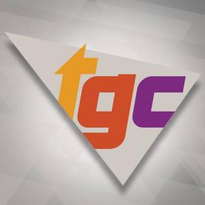The Game Channel - Image: Tgc 2014logo