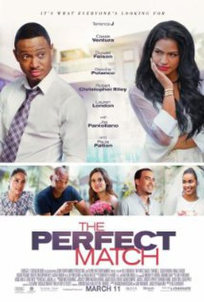 Picture of a movie: The Perfect Match