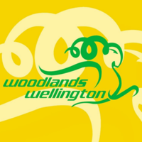 Woodlands Wellington Football Club logo.png