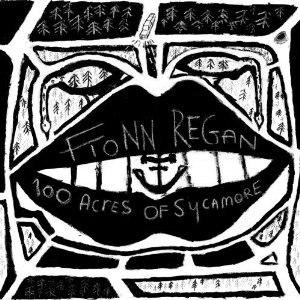 100 Acres of Sycamore - Image: 100 Acres of Sycamore (Fionn Regan album cover art)