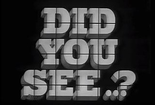 <i>Did You See...?</i>