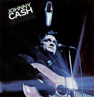I Would Like to See You Again - Image: Johnny Cash I Would Liketo See You Again