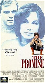 <i>The Promise</i> (1979 film) 1979 film by Gilbert Cates