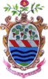 Coat of arms of Trevignano Romano