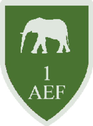 No. 1 Air Experience Flight RAF - No. 1 AEF Flight Emblem whilst based at RAF Manston in Kent